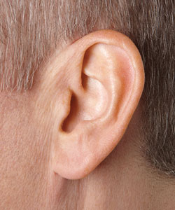 5 Things You Probably Don't Know About Hearing Aids