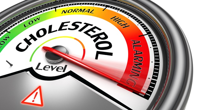 High Cholesterol and Hearing Loss